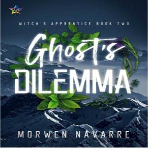 Morwen Navarre - Ghost's Dilemma Square