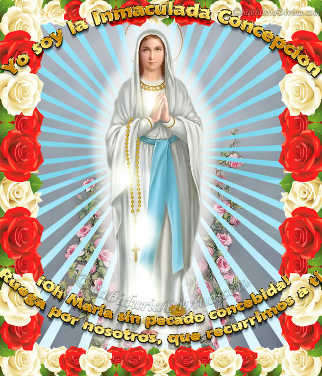 Virgen de Lourdes; Virgen del Rosario (bannerppal)