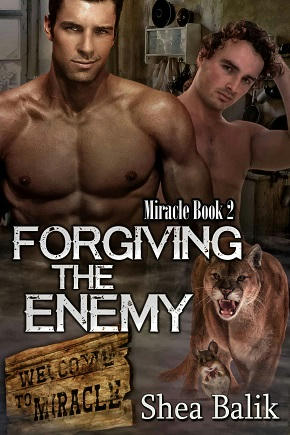 Shea Balik - Forgiving the Enemy Cover