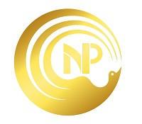 Nora Logo Gold