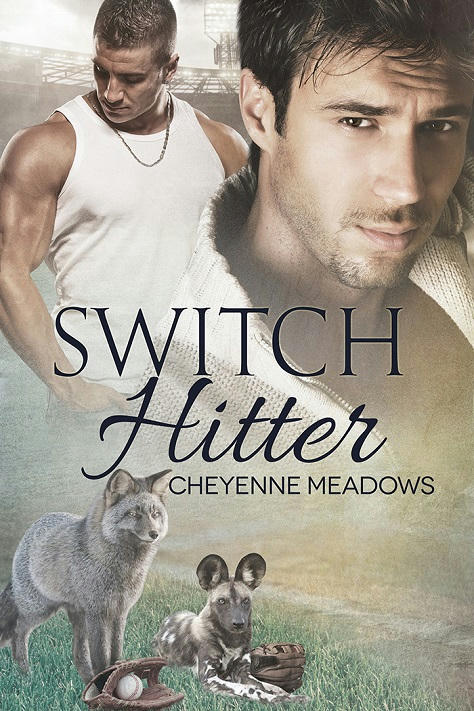 Cheyenne Meadows - Switch Hitter Cover