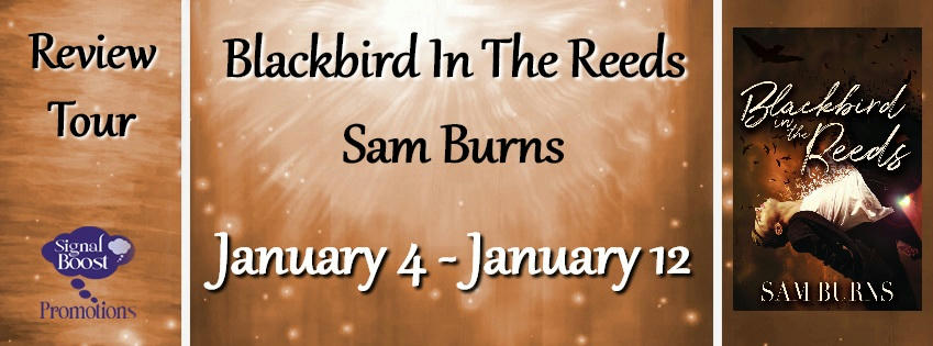 Sam Burns - Blackbird In The Reeds RTBanner