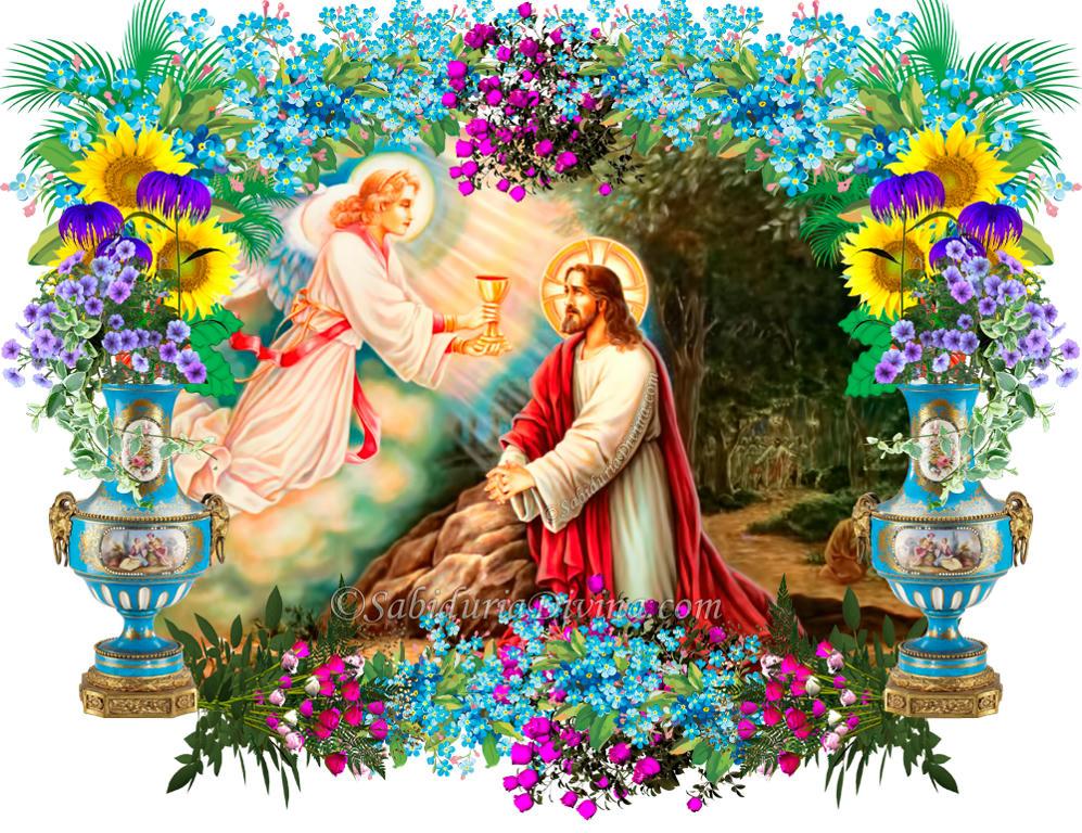 agonia de Jesus huerto de Getsemani
