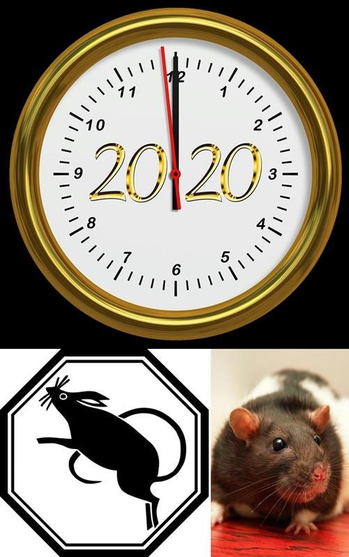 Lo que nos traerá el 2020, la rata de metal china en la Tecnología, el cine y la astronomía