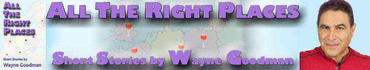 Wayne Goodman - All The Right Places Banner 2