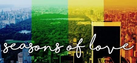 Elyse Springer - Seasons of Love Banner