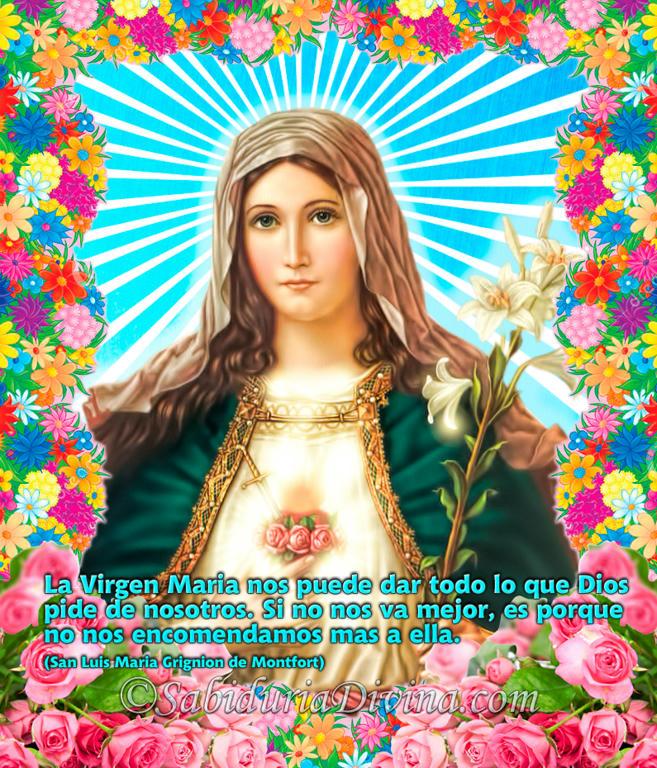 La Inmaculada Virgen Maria, puerta del Cielo (3)