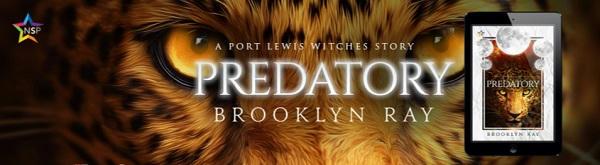 Brooklyn Ray - Predatory NineStar Banner