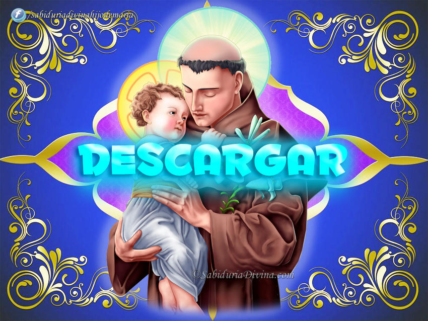 descargar download icon
