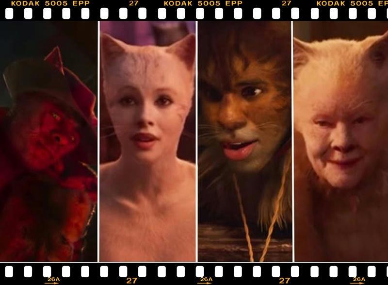 Los gatos que no han gustado de la película musical Cats