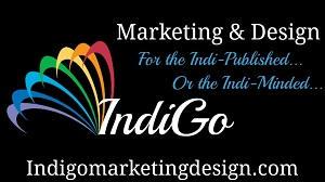 Indigo promo Banner
