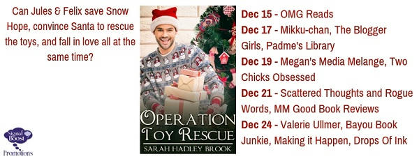 Sarah Hadley Brook - Operation Toy Rescue TourGraphic-15