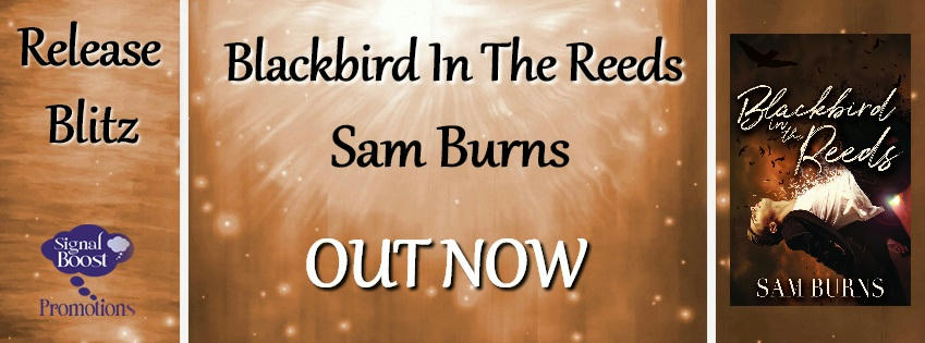 Sam Burns - Blackbird In The Reeds RBBanner