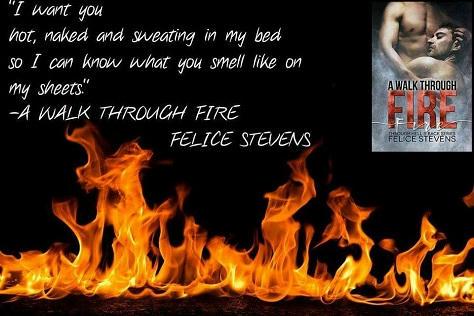 Felice Stevens - A Walk Through Fire Teaser 1